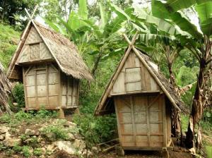 A traditional house to store the rice