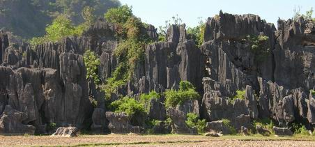 The beatiful of stone forest